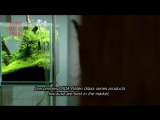 ADA. THE MOVIE OF AQUA DESIGN AMANO side-concept -English sub.