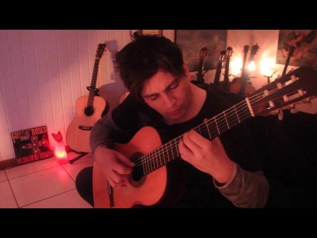 Душевно играет на гитаре Бетховен-К Элизе,удивительный человек,талант, шикарно сыграл.