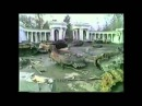 Чеченский излом 336 ОБрМП 879 ОДШБ 877 ОБ