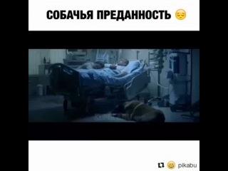 evelina_zubkova video