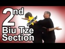 Wing Tsun 2nd Biu Tze section
