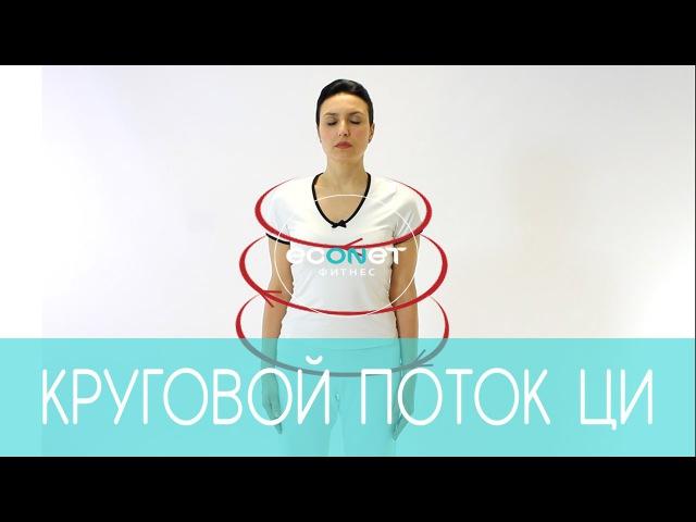 Как избавиться от ЛИШНЕГО ВЕСА? Круговой поток ЦИ | econet.ru