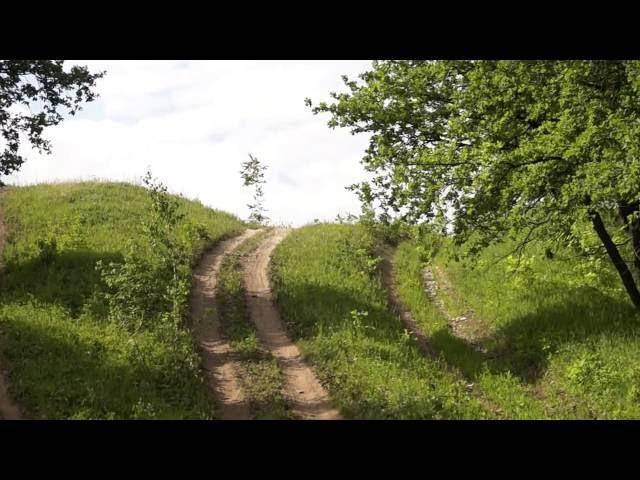 Кукует кукушка поют птицы в Бавлинском лесу за родником