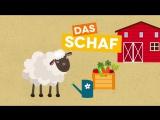 Tiere lernen und Tiergeräusche für Kinder und Kleinkinder׃ Auf dem Bauernhof (DEUTSCH)