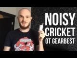 ОБЗОР Мехбокс Noisy Cricket советы, намотки, уход, конструктив