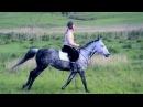 Падения с лошадей и моя крейзи лошадь HORSE FAIL