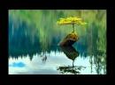 Л. Бетховен: Тишина