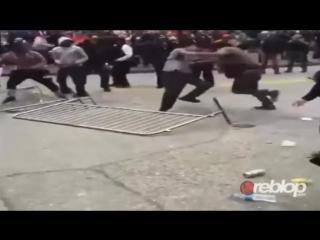 Niggers suck dick