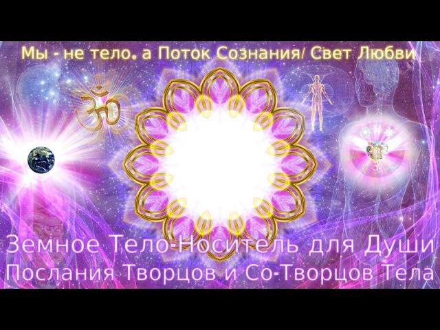Земное Тело-Носитель для Души (Послания Творцов и Со-Творцов Тела)