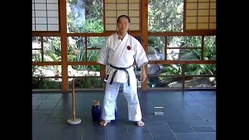 Goju Ryu Hojo Undo