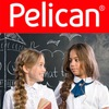 Pelican (Пеликан) — official — магазин одежды