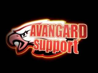 AVANGARD support