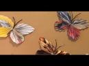 Поделки своими руками Бабочка из бумаги. Butterfly from paper