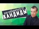 Как избавиться от кандиды Грибок кандидоз Николая Пейчев Академия Целителей