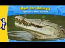 Meet the Animals 3 Nile Crocodile Wild Animals Little Fox Animated Stories for Kids