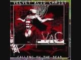 velvet acid christ - timeless visions