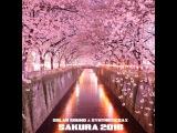Solar Sound & Syntheticsax - Sakura 2016 (Original Mix)