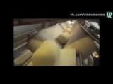 Удивительные машины кондитерского производства