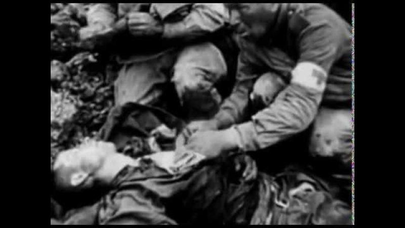 Воронежские герои матросовцы (в боях за Воронеж летом 1942 года)