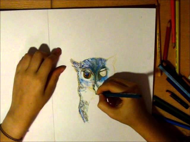 If I Was A Bird - Watercolor pencils | Daria Philomela