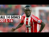 Sadio Mane - ALL 14 GOALS in 2015/16 - English Commentary HD