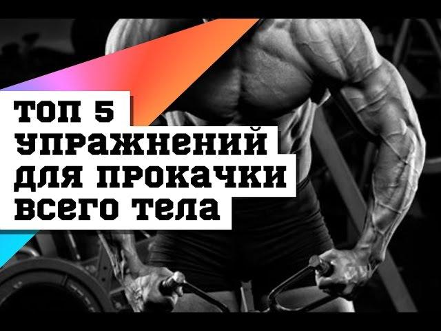 ТОП 5 упражнений для прокачки всего тела DarkFit njg 5 eghf;ytybq lkz ghjrfxrb dctuj ntkf darkfit