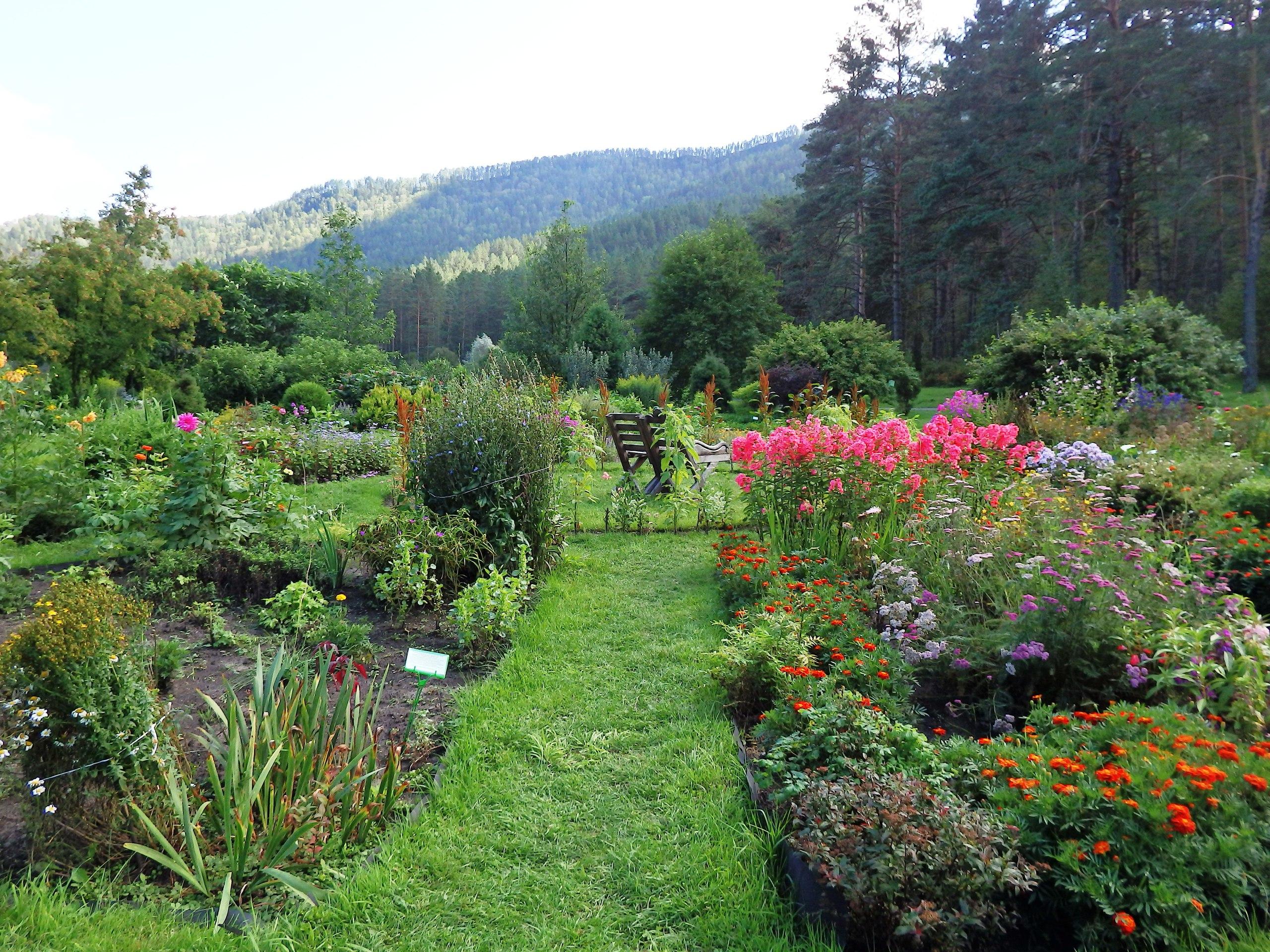 безопасности горно алтайский ботанический сад фото вопросы