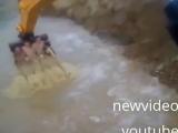 Русские экстремалы катаются на ковше экскаватора