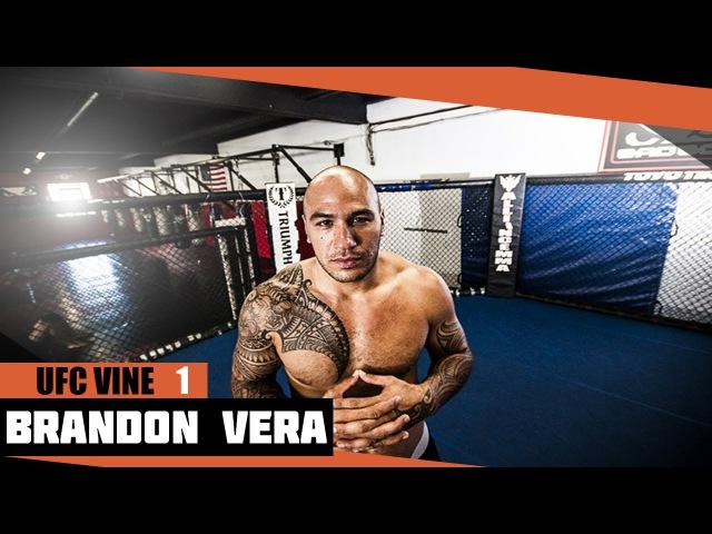 UFC Vines Brandon Vera