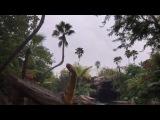 """Samoylova Oxana on Instagram: """"Ариела уговорила нас пойти на этот аттракцион в Universal studio))с тех пор не так любит динозавров))? Шутка)шикарный Jurassic Park с…"""""""