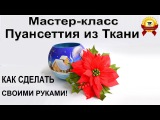 ✿ ЦВЕТЫ ИЗ ТКАНИ: ПуанСеттия - своими руками мастер-класс!