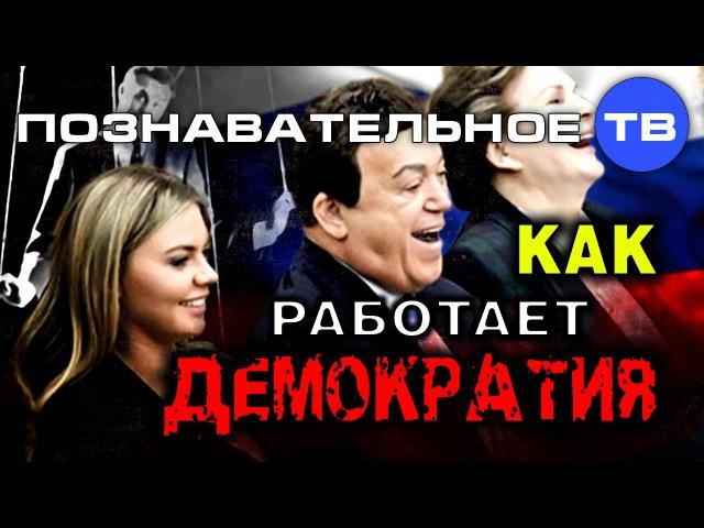 Как работает колониальная демократия РФ (Познавательное ТВ, Евгений Фёдоров)