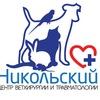 """Центр ветхирургии и травматологии """"Никольский"""""""