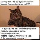 Надежда Сазонова. Фото №9