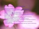 День 2 Женственность Как стать наполненной Женщиной Любосвета Радалова