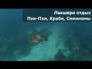 Лакшери отдых на яхте (хехе). Шторм в море. Черепаха под водой