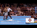 Day Roy - Boxing Vines By Ali | С.А.М | STRONG DIVISION |