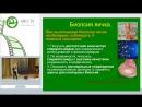 Гамидов С.И. - Варикоцеле при необструктивной азооспермии - варикоцелэктомия или микроТЕББ