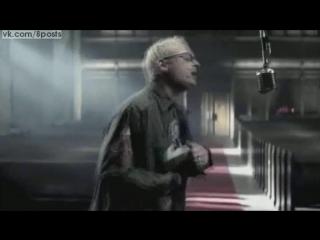 Животный Кавер песни