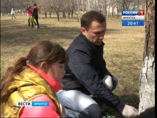 """Более 50 000 человек вышли на общегородской субботник в Иркутске, """"Вести-Иркутск"""""""