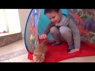 Питомец мисс Кэти и мистера Макса - Кошечка Мурка. Клип о Кошке Мурке - питомце Кати и Макса