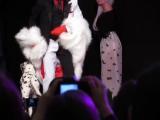 bigfest 101 dalmatians cruella de vil female and male ver