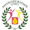 Совет Молодежи при главе Воскресенского муниципа