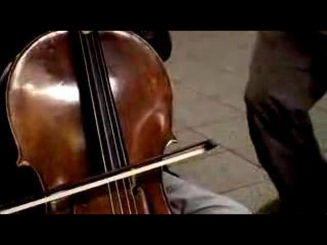 Симфоджаз в метро (виолончель и флейта)