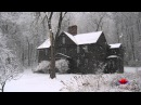 🎧 Snowstorm Sound -- 8 Hours of Blizzard noise, sound for sleep, relax, ambience, meditation etc.