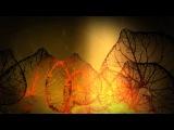 Cosmic Trance -- Lauge &amp Baba Gnohm - Beyond the Peak