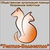 """Помощь бездомным животным """"Усатые-полосатые"""""""
