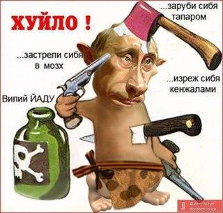 """Если бы Веру Савченко хотели """"посадить"""" в РФ, ее бы давно арестовали по уголовному делу, открытому в 2015 году, - Новиков - Цензор.НЕТ 8688"""