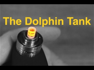 The Dolphin Tank! Ceramic Heating Element Here We Go!
