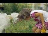 Дети в зоопарке. Приколы детей с животными. Самые смешные моменты. Улетные животные.